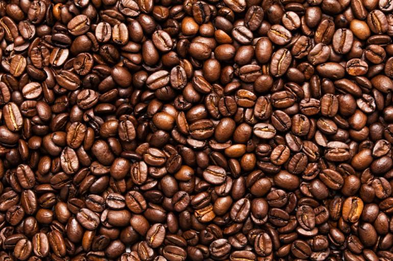 L'utilité du marc de café pour le jardinage
