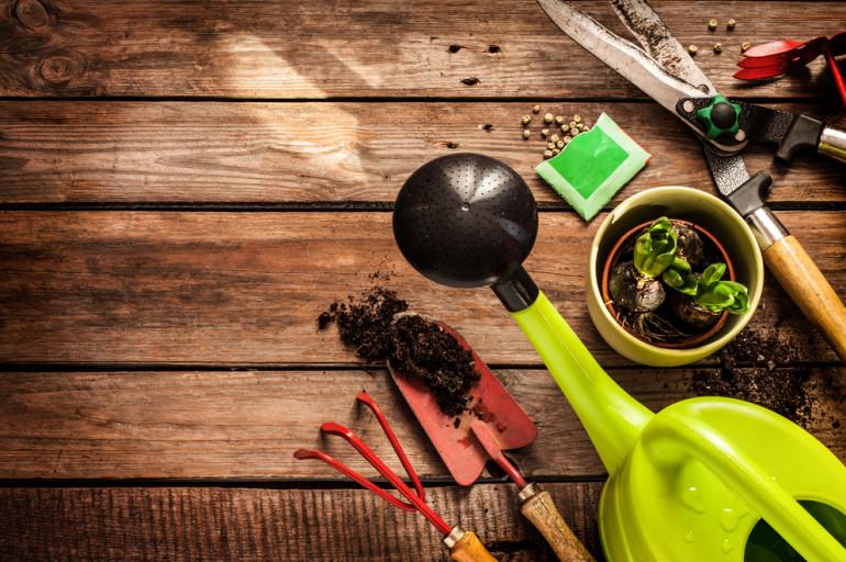 L'entretien des outils de jardinage