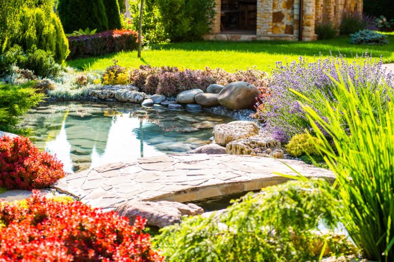 Créer un jardin d'eau: le style, la faune et la flore