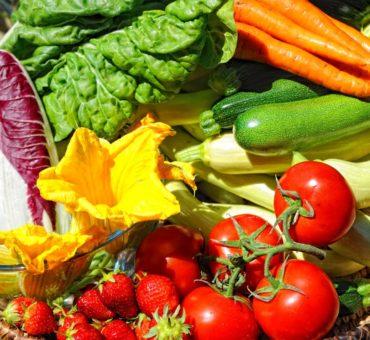 Pailler le sol de votre jardin potager