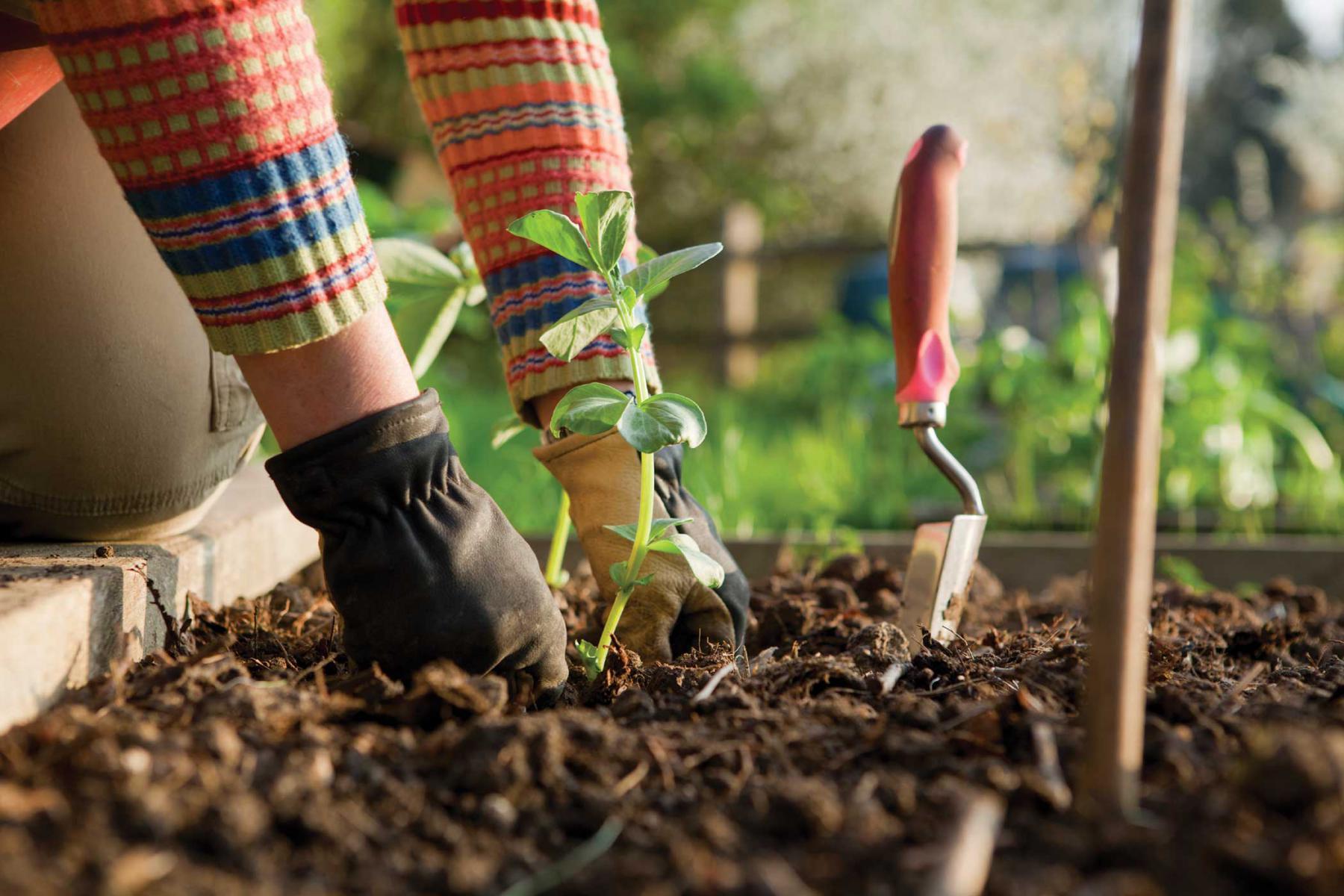 Le jardinage pour les paresseux - Les Jardins du Clos Joli