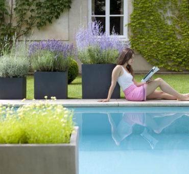 Dénicher une piscine pour votre jardin au meilleur prix