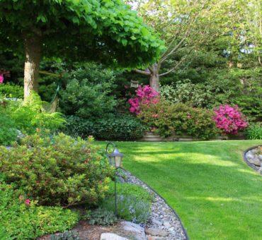 L'intérêt de faire appel à un paysagiste pour son extérieur de maison