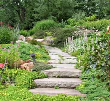 Un jardin thérapeutique dédié aux malades d'Alzheimer ouvre ses portes à Blois