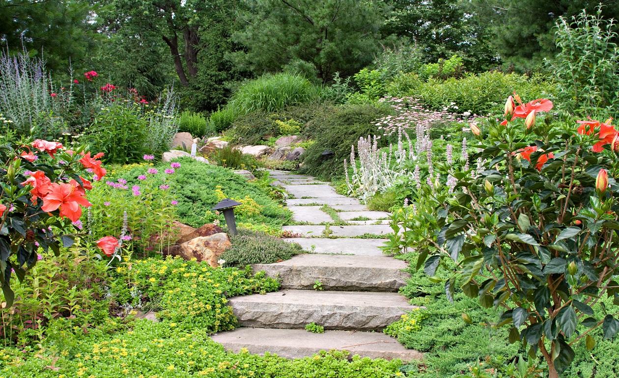 Un jardin th rapeutique d di aux malades d alzheimer - Front de liberation des nains de jardin ...
