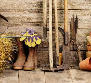 Jardin potager : les outils de base