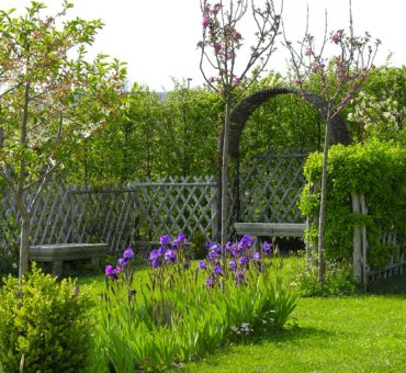 Les jardins du clos joli le blog jardin for Entretenir son jardin en avril