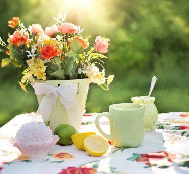Les meilleurs conseils pour décorer votre jardin